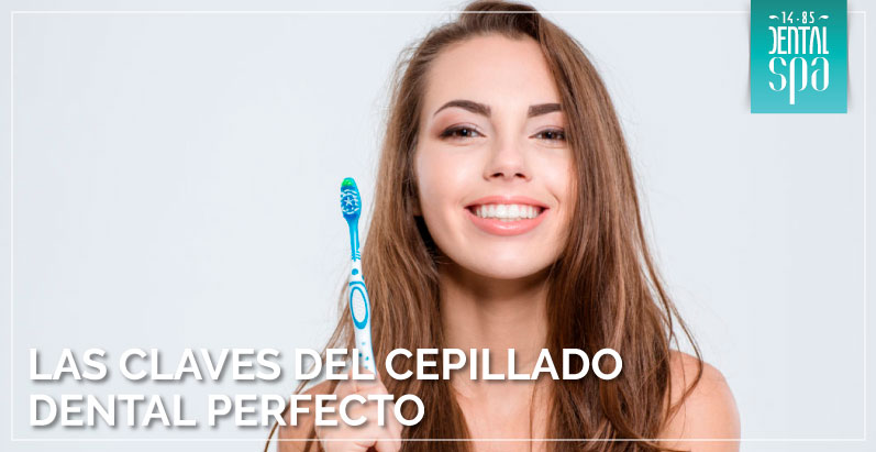 las claves del cepillado dental perfecto